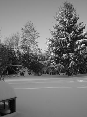 Flocons de neige et musique féérique...